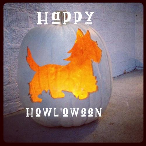 HowlScottiePumpkin