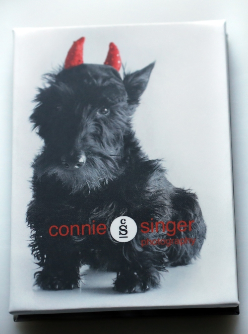 Scotties_accordion_back_cover