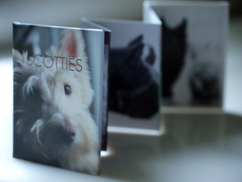 Scotties_accordion_front