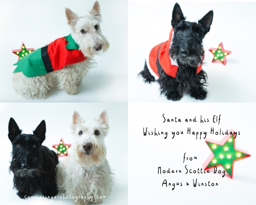 Angus&Winston_Holiday_8X10_2015