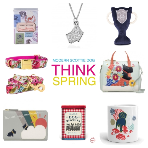 MSD_spring